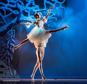 Nutcracker 2014 American Youth Ballet